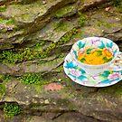 Tea On the Rocks by Nicole  McKinney