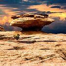 Mushroom Rock by BGSPhoto