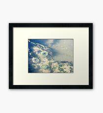 Underwater Sea Anemones Framed Print