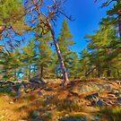 Deadwood by Veikko  Suikkanen