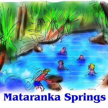Mataranka Springs by davidfraser