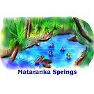 Mataranka Springs by David Fraser