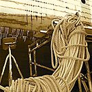 Rope Reclining by H A Waring Johnson