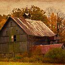Old Barn by BigD