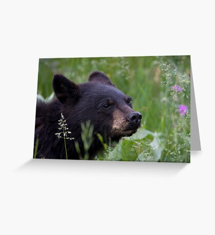Cub Scout Greeting Card