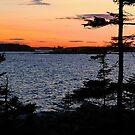 'After Sunset, Winter Harbor Lighthouse' by Scott Bricker