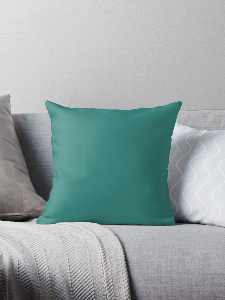 Beautiful Cushions/ Plain Celadon green by ozcushions