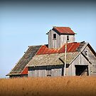 Illinois Barn by Gayle Dolinger
