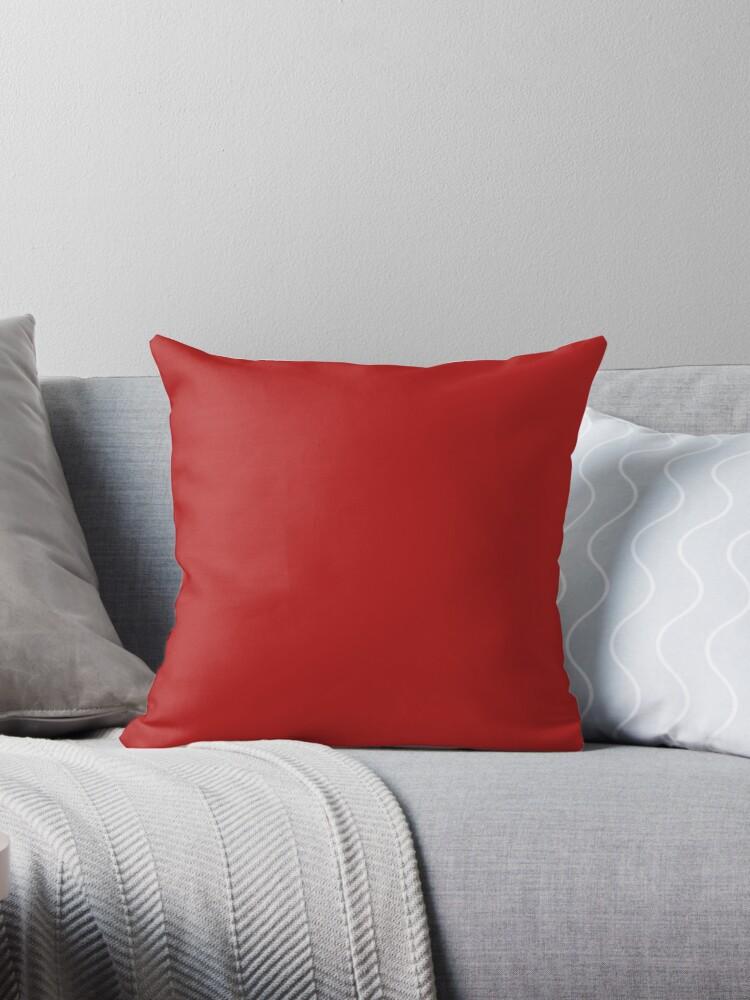 Beautiful Cushions/ Plain Carnelian by ozcushions