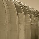 Linear Functions - Metal Building in Sepia Tones by Buckwhite