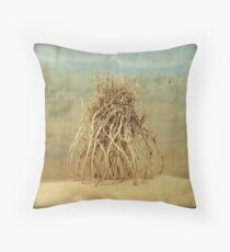 The Anatomy of a Parallel Universe Throw Pillow