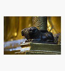 Guarding Lions Photographic Print