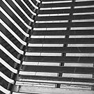 Linear Funtions or Straight curves in Balck & white by Buckwhite