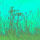 Blue Green Grass and Seed Heads by MagsArt