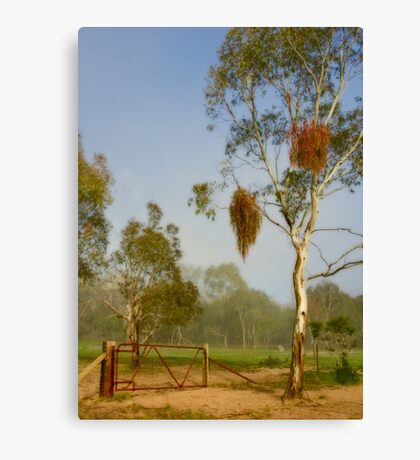 Pioneer Park ~ No 1 Canvas Print