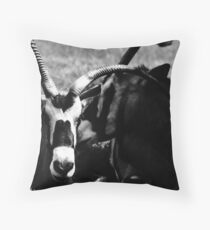 Slanted Throw Pillow