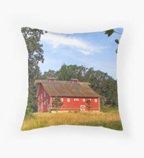 John Fiechter's Old Red Barn  Throw Pillow