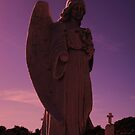 the sad angel  by Michael Skeard