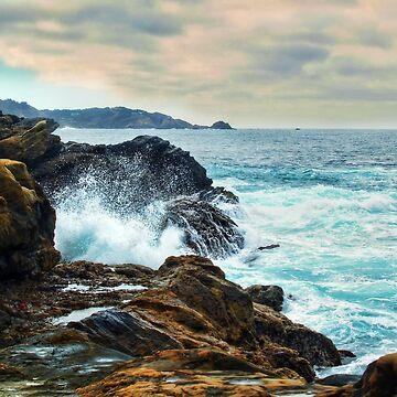Point Lobos Carmel California  by DianaG