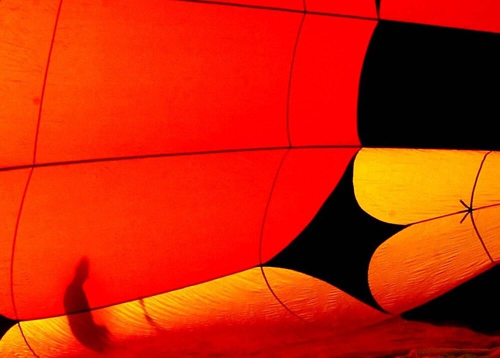 Hot Air Balloon #3 by Oscar Salinas
