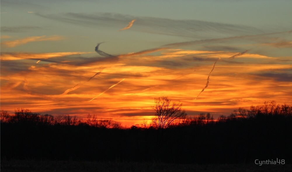 Sky At Sunset by Cynthia48