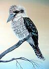 Kookaburra by Linda Callaghan