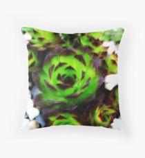 Aeonium Plant Throw Pillow