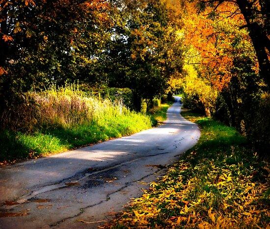 Autumn Dreams. by ScenicViewPics