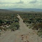 Old Ore Road at Big Bend National Park by Susan Russell