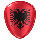 3d rendering of an Albania flag icon. by erllre74