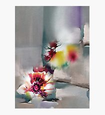Blooms R Photographic Print