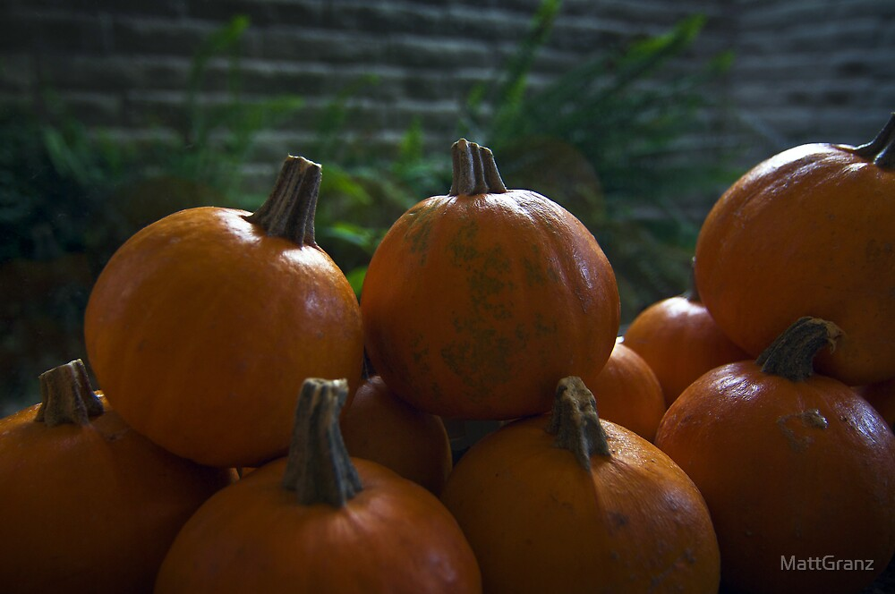 October is here! by MattGranz