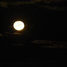 moon by feeee