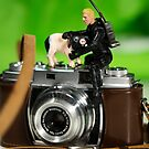 The 1:18 Animal Rescue Team - Pig on old Camera by Martine Carlsen