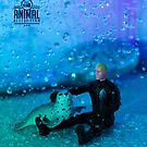 The 1:18 Animal Rescue Team - Seal in shower by Martine Carlsen