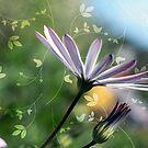 Sunshiny Day-sy by Cordelia