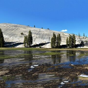Pothole Dome – Tuolumne Meadows, Yosemite National Park, Tuolumne County, CA by RKreklow