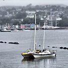 Tobermory Bay by RicheRifkind