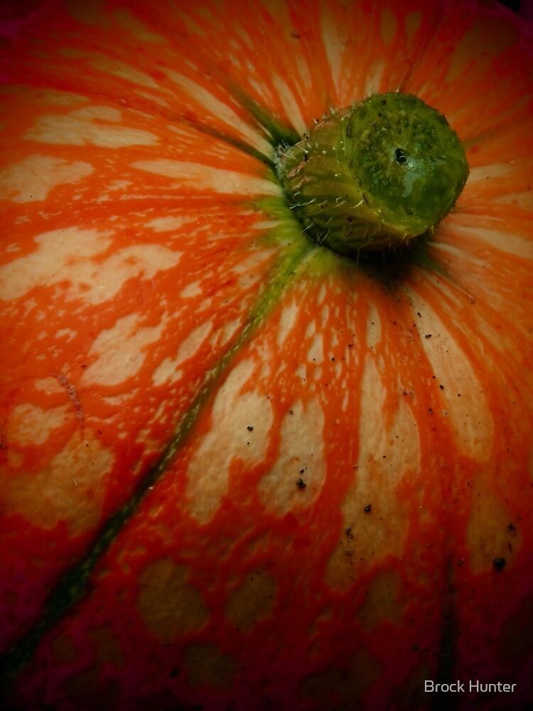 downie gourd  by Brock Hunter