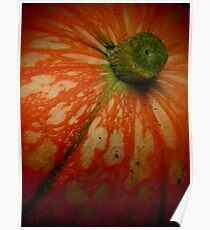 downie gourd  Poster