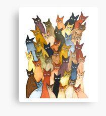 Lámina metálica camiseta del gato - camiseta de los gatos del potter, Harry Cute - Regalos para el gato