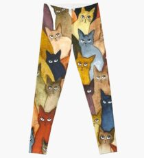 cat t-shirt -Potter Cats t-shirt, Harry Cute - Gifts For Cat  Leggings