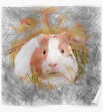 Artistic animal Guinea Pig Poster