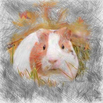 Artistic animal Guinea Pig by Jamcolors