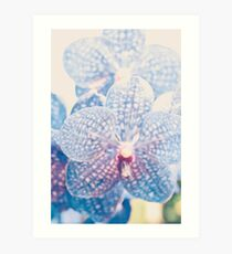Orchidee abstrakt Kunstdruck