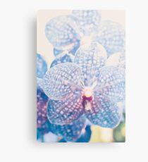 Lienzo metálico Resumen de orquídeas