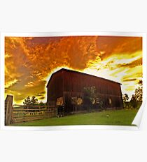 Tobacco Sunset Poster
