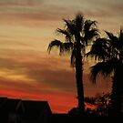 Sunset in AZ. by Bonnie Pelton