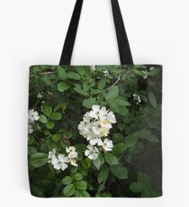 From the Fields of Forever ~ Voice of Love Tote Bag