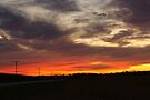 Sunset over Hickory Hills by Richard Williams
